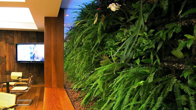 Aluguel de Jardim Vertical | Ecotelhado