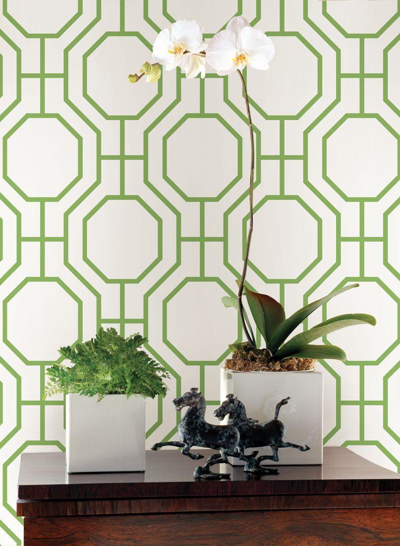A bold symmetrical trellis design with linked octagonal