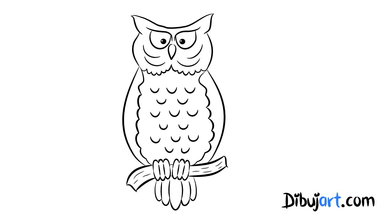 Bosquejo o sketch del Buho para colorear How to draw a Owl Video ...