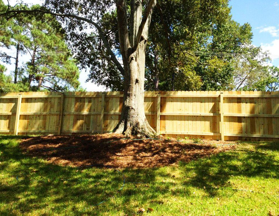 Baton Rouge Louisiana · Home Backyard, Backyard Fencing, Wood Fencing,  Backyard Goals, Home Design, Summer
