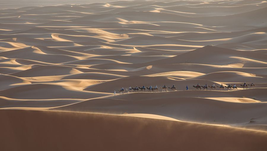 Morning of Sahara by Jungshik Lee
