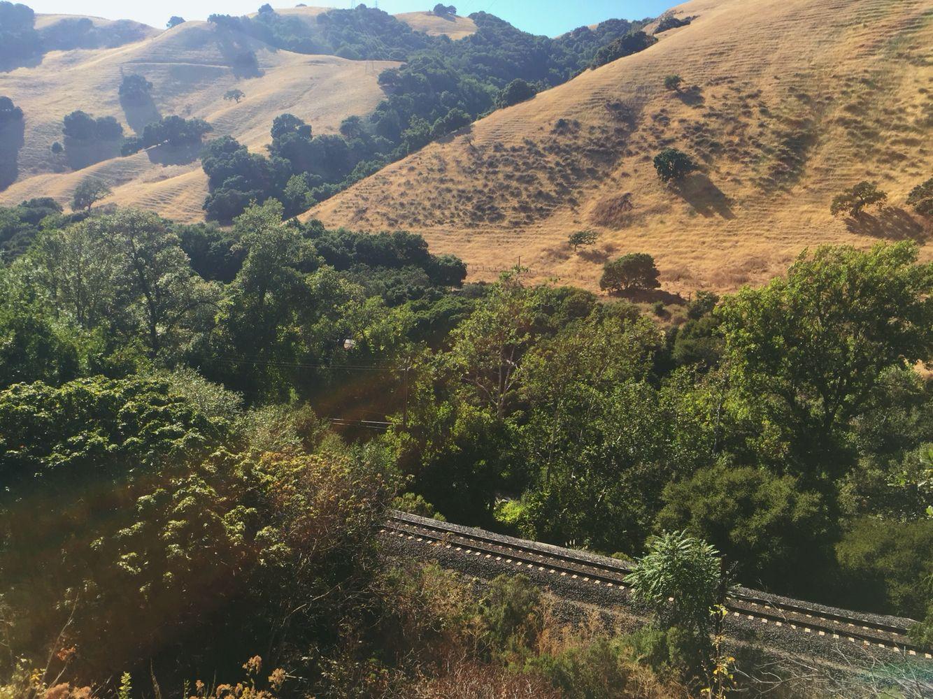 Secret Sidewalk, Fremont, CA | Places I Have Been | Pinterest | Sidewalk