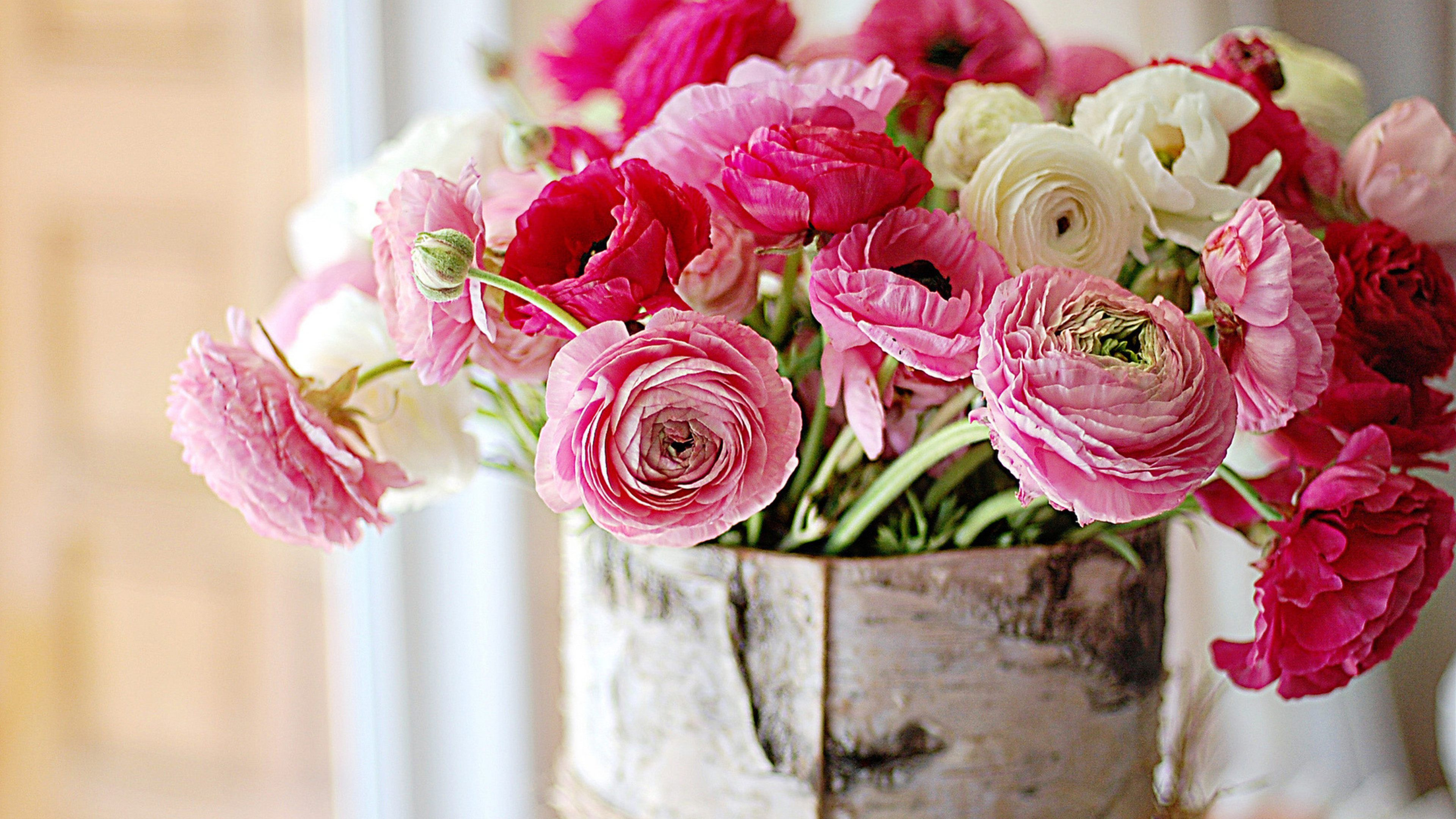 Image result for peony wallpaper wallpaper pinterest gardens still life bouquets nature flowers color pink vase bowl macro soft bokeh window wallpaper background izmirmasajfo Images