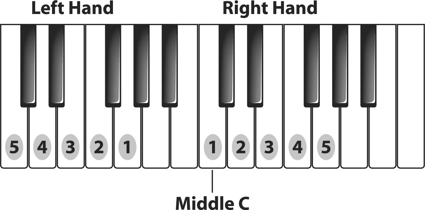 Finger positions on the piano music pinterest pianos free finger positions on the piano hexwebz Image collections