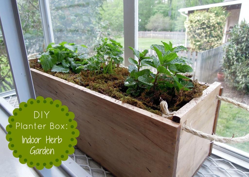 Diy Planter Box Herb Garden The Gro Project Diy Gift