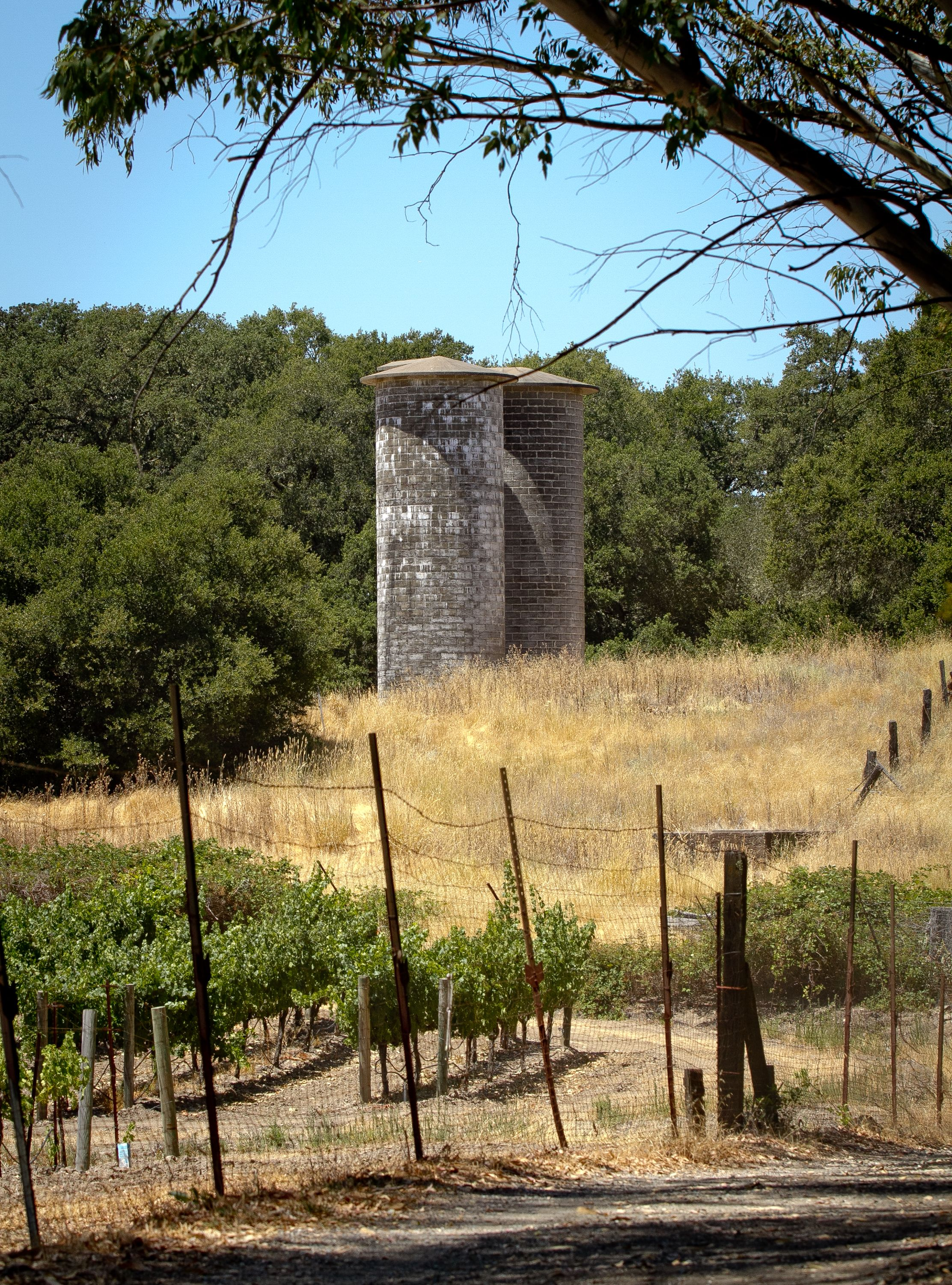 At this 1,400-acre site on Sonoma Mountain in Glen Ellen,you can visit Jack London's home, his grave site and his experimental farm. You can also hike miles of scenic trails.