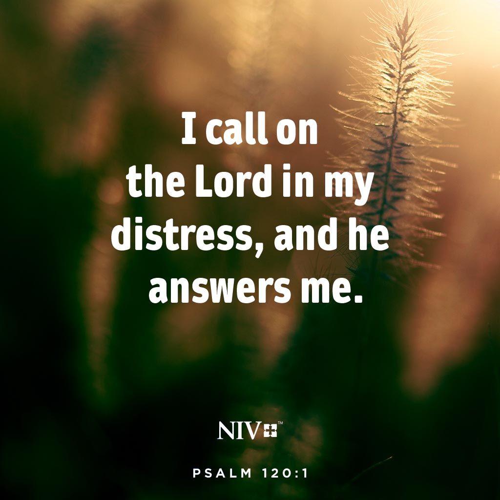 James 3:13
