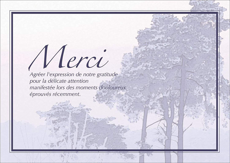 Carte Remerciement Deces Gratuite A Imprimer Famille Xh87 Jornalagora Carte De Remerciement Deces Remerciement Deces Carte Remerciement