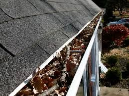 Canberra Gutter Cleaning Why Clean Your Roof Gutters In Canberra Termite Control Cleaning Gutters Wood Termites