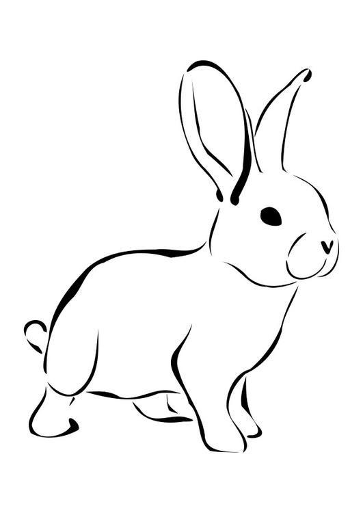 Kleurplaat konijn Afb 27276. | Dieren tekenen