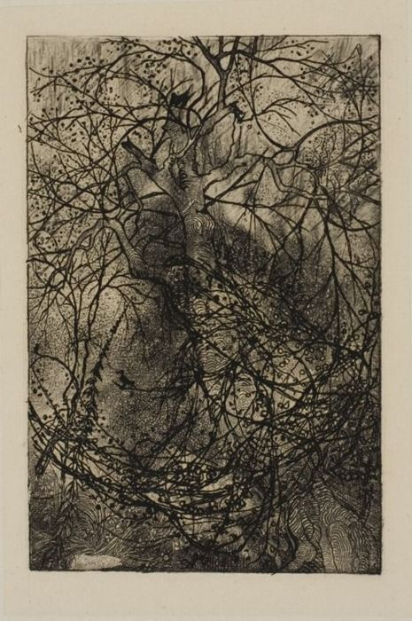 Rodolphe Bresdin (French, 1825-1885), Tree Branches