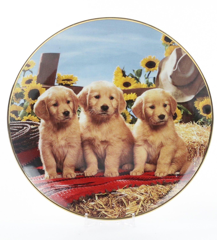 Pchli Targ Talerz Z Pieskami Royal Doulton 8267208698 Oficjalne Archiwum Allegro Food Animals Royal Doulton Pets