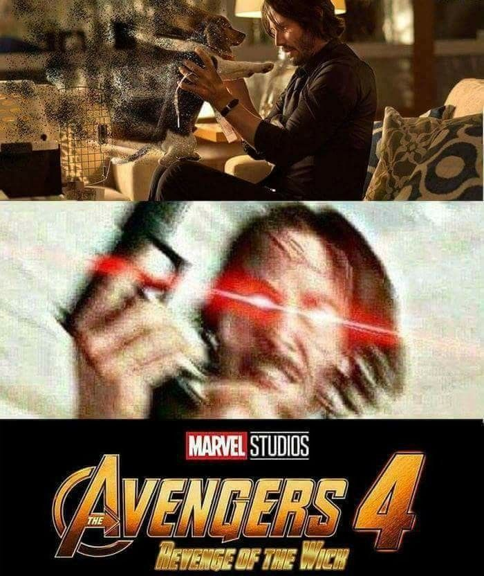 John Wick In Avengers 4 Don T Mess With John Wick S Dogs Really Funny Memes Crazy Funny Memes Funny Marvel Memes