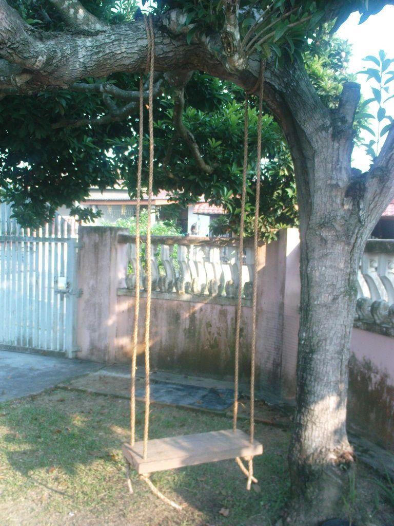 How To Diy A Simple Tree Swing Tree Swings Diy Tree Swing Diy Tree