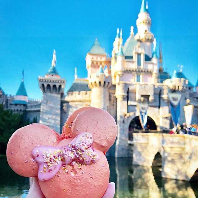 Is this a macaron?!?! Agshjfbbeujsnnfjen #disneylandfood