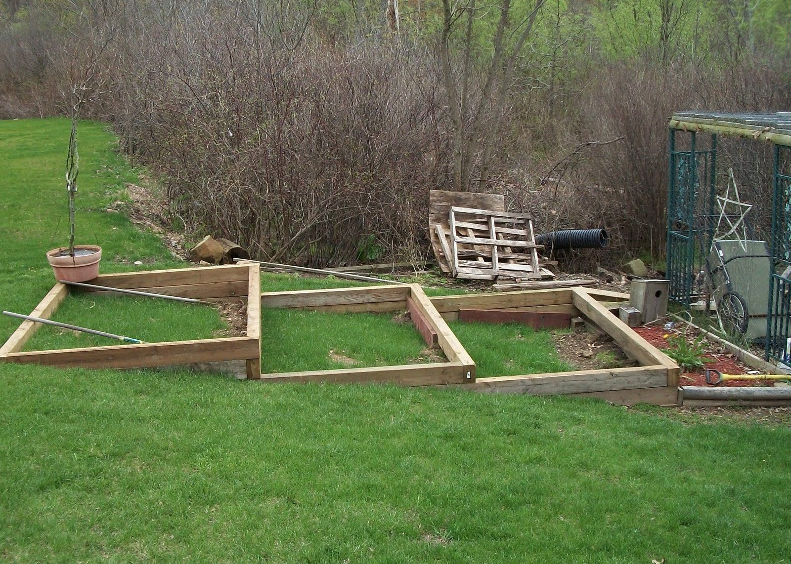 Bluebirds and Blueberries! Tiered Gardens too! | Sloped ...