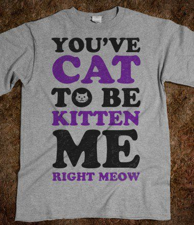 You've Cat to Be Kitten Me | Skreened.com on Wanelo