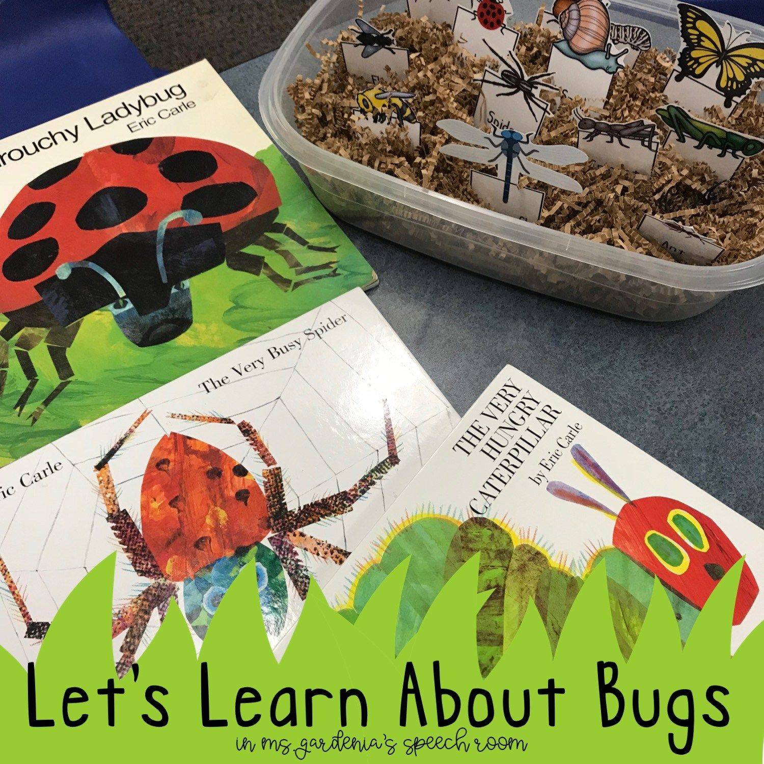 Spring Preschool Vocabulary Insects