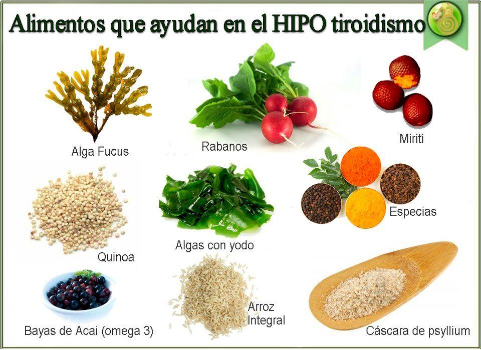 dieta nutricionista para hipertiroidismo