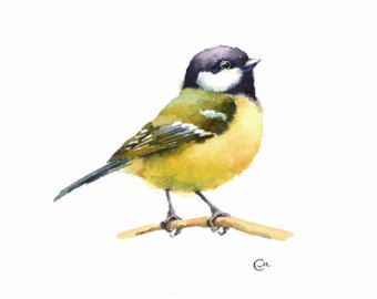 Watercolor Bird Yellow Robin Original Watercolor Painting 7 4 5