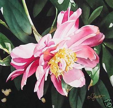 Jacqueline Gnott, Watercolor, paintings, famous artist, Flower Paintings, Indiana Artist,