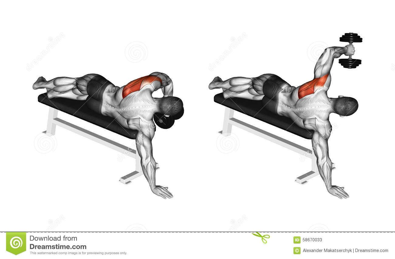 Exercising Lead Hand With A Dumbbell Rear Deltoid
