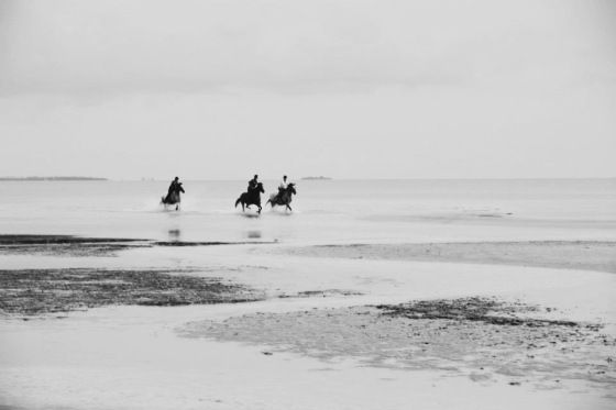 One weekend, 5 things to do in Zanzibar: a sunset ride on the beach. Look at the blog for more :)
