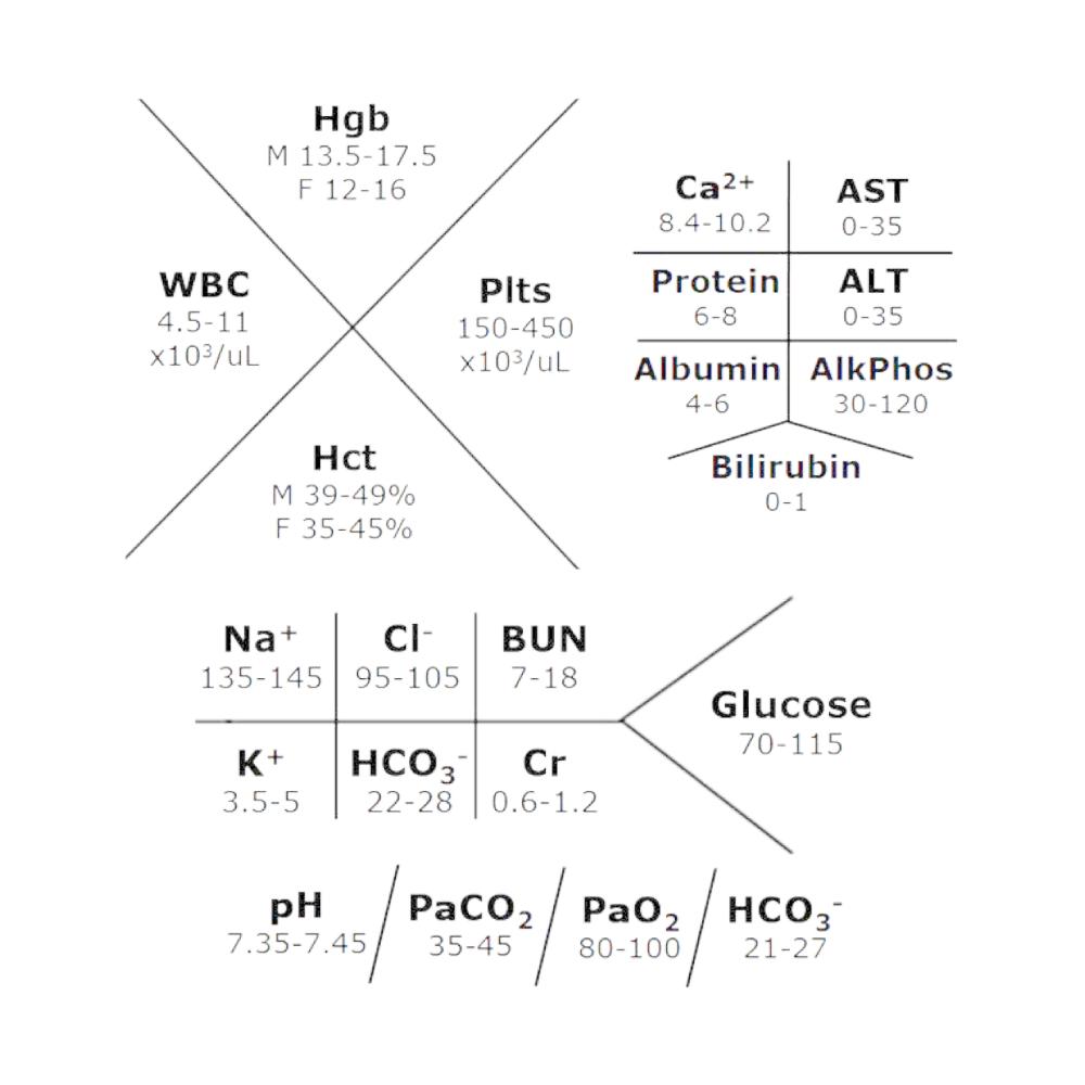 Fishbone Lab Values Diagram Manual Guide