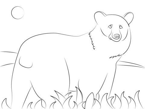 Black Bear Coloring Pages - Coloring Home | 360x480