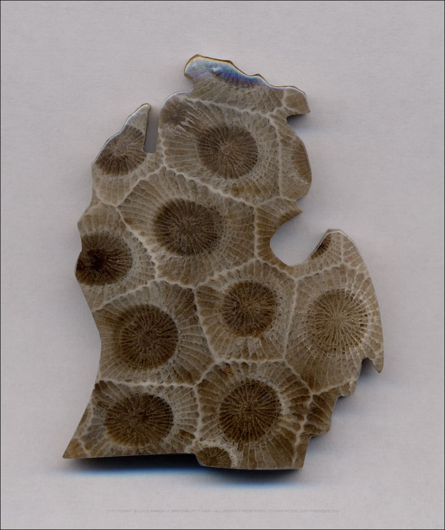 Oh Michigan Made From A Petoskey Stone I Have One Just Like This