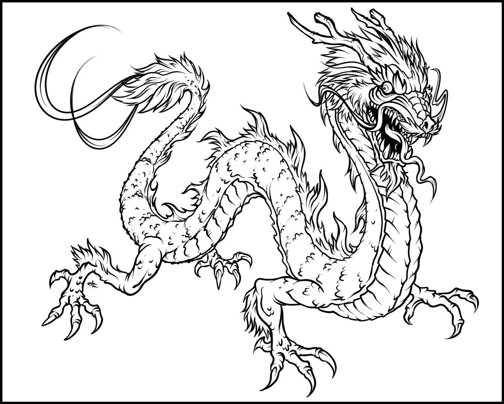 Undefined Dragon Coloring Page Adult Coloring Pages Coloring