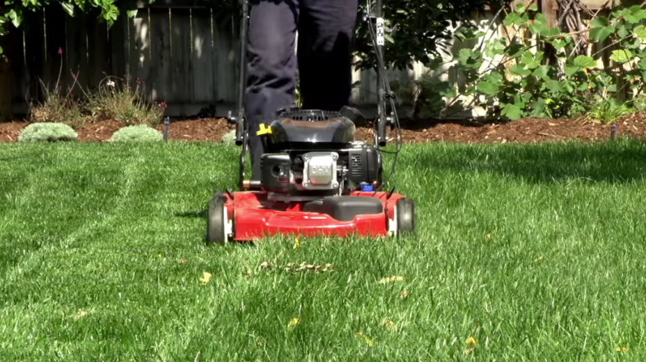Pin On Lawn Mowing