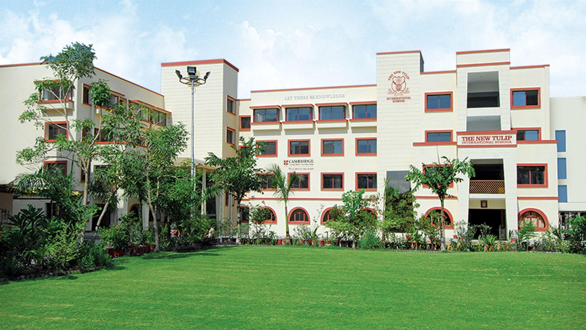 The new tulip international school ahmedabad schools