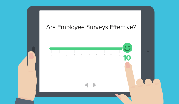 Are Employee Surveys Effective Employee Feedback Team Development Employer Branding