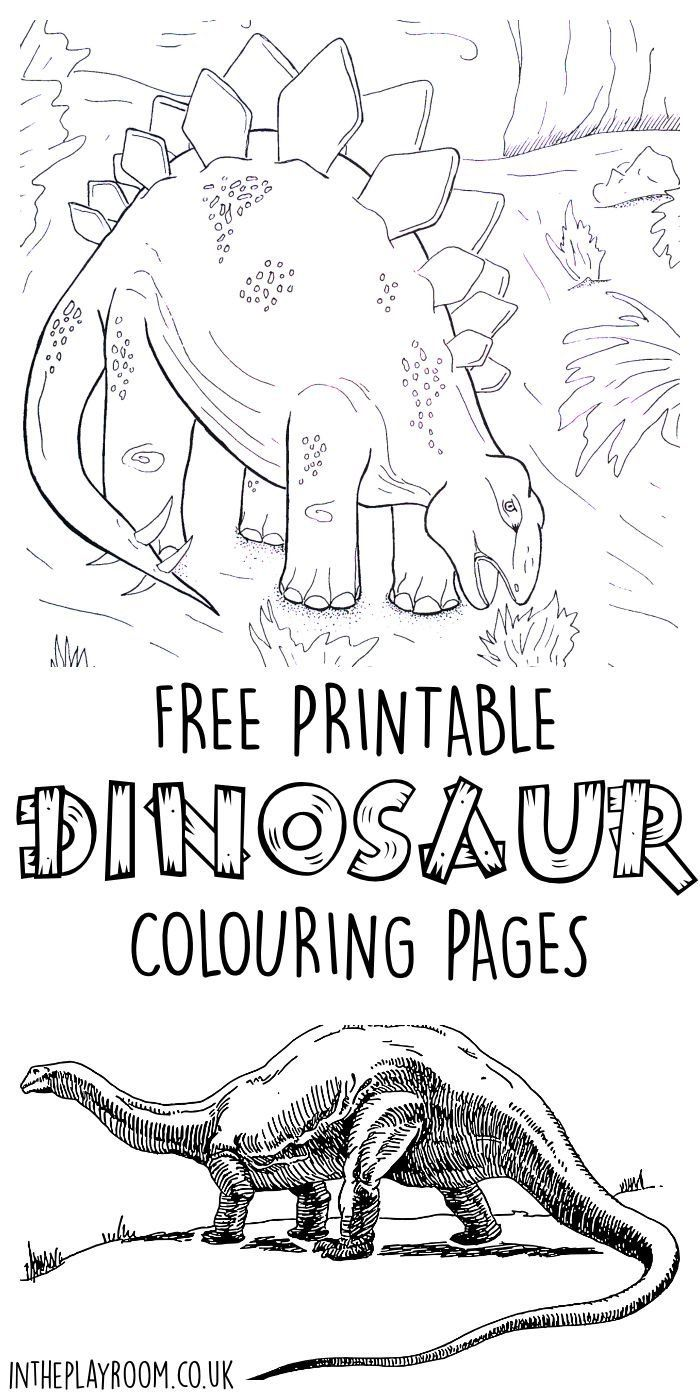 Dinosaur Colouring Pages | Pinterest | Free printable, Scene and Free