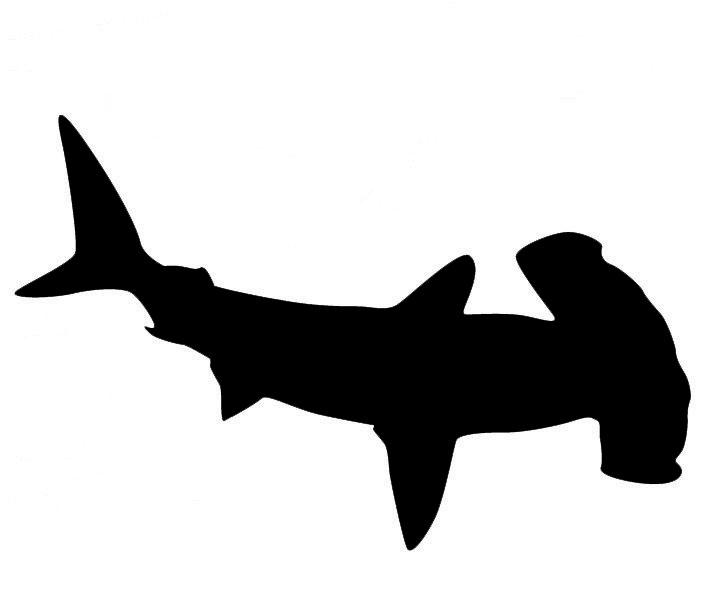 resultado de imagen de hammerhead shark silhouette