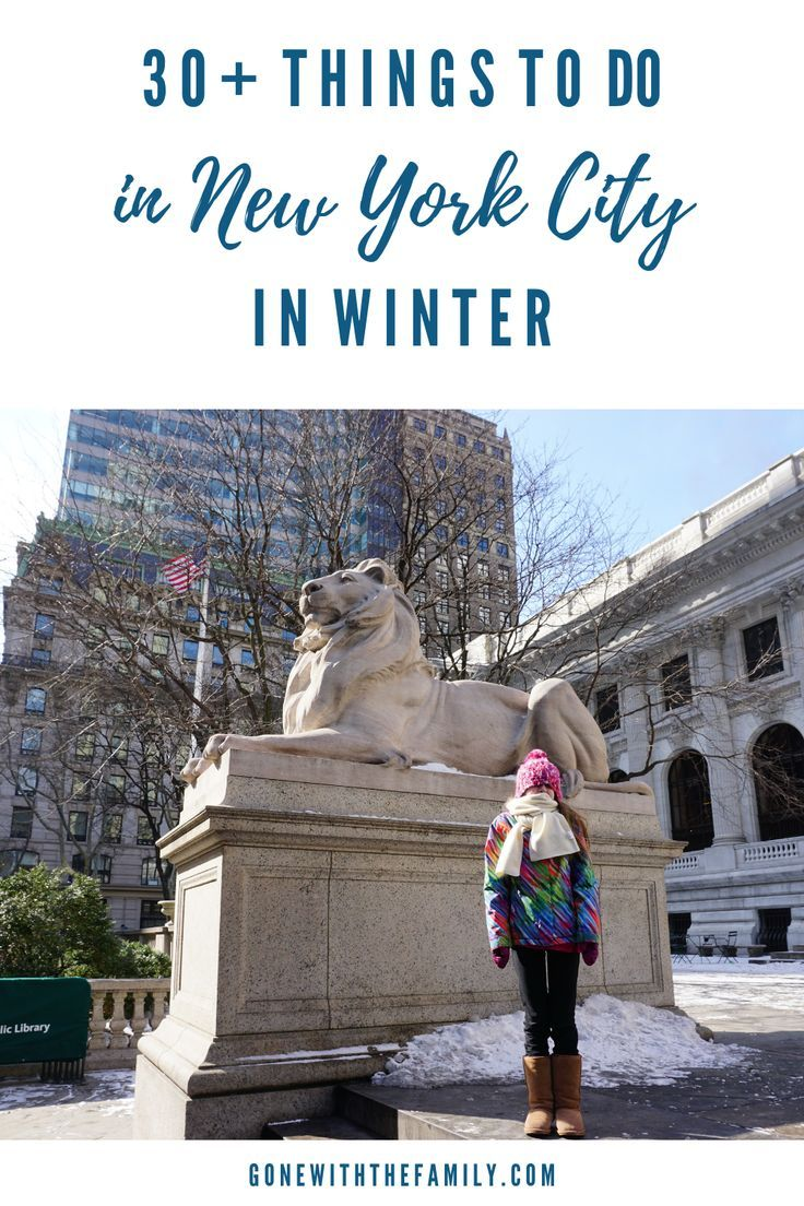 Things To Do In New York City In Winter