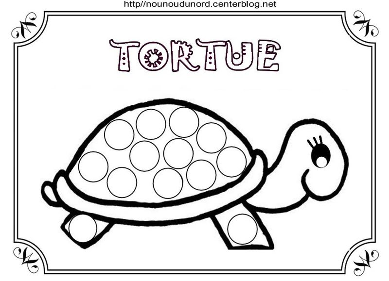 Tortues - Coloriage tortue ...