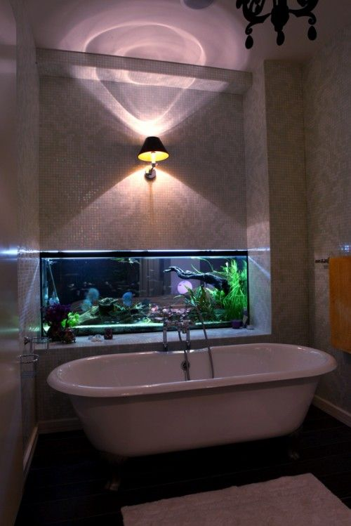 Home Aquarium Design Ideas: WOW! Fish Tank? Nice To Look At While Relaxing In The Bath