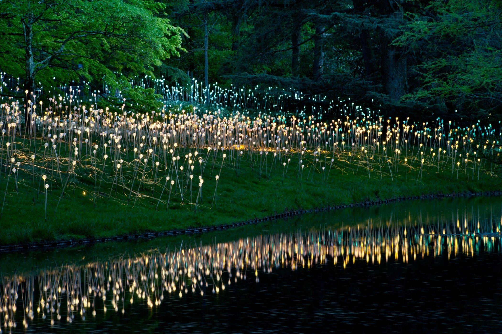 Longwood Gardens Light Installations