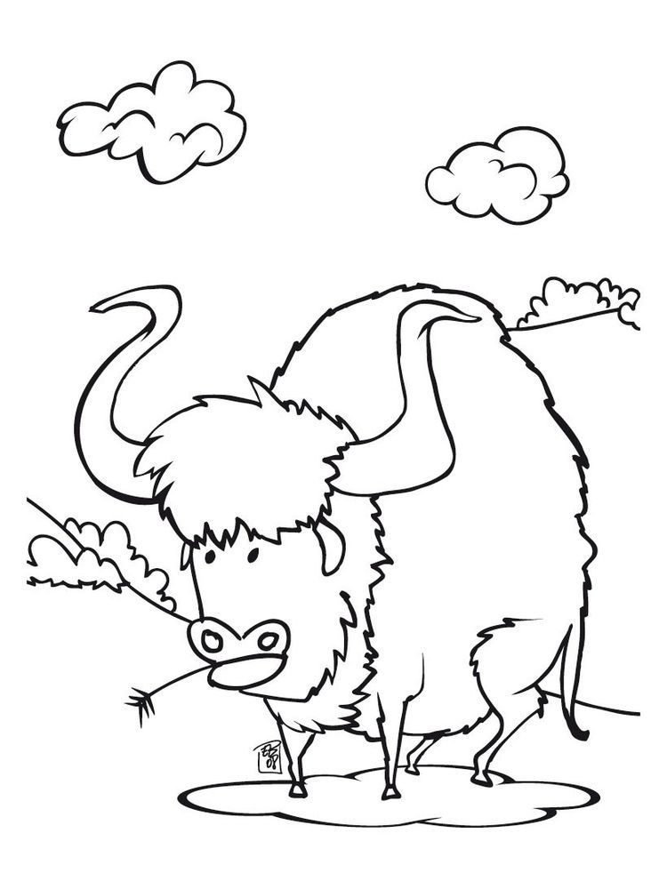 Buffalo Coloring Pages Oke Buffalo Is A Cattle Mammal Inhabit