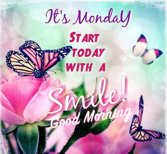 It\'s Monday, Start Today With A Smile, Good Morning | good morning ...