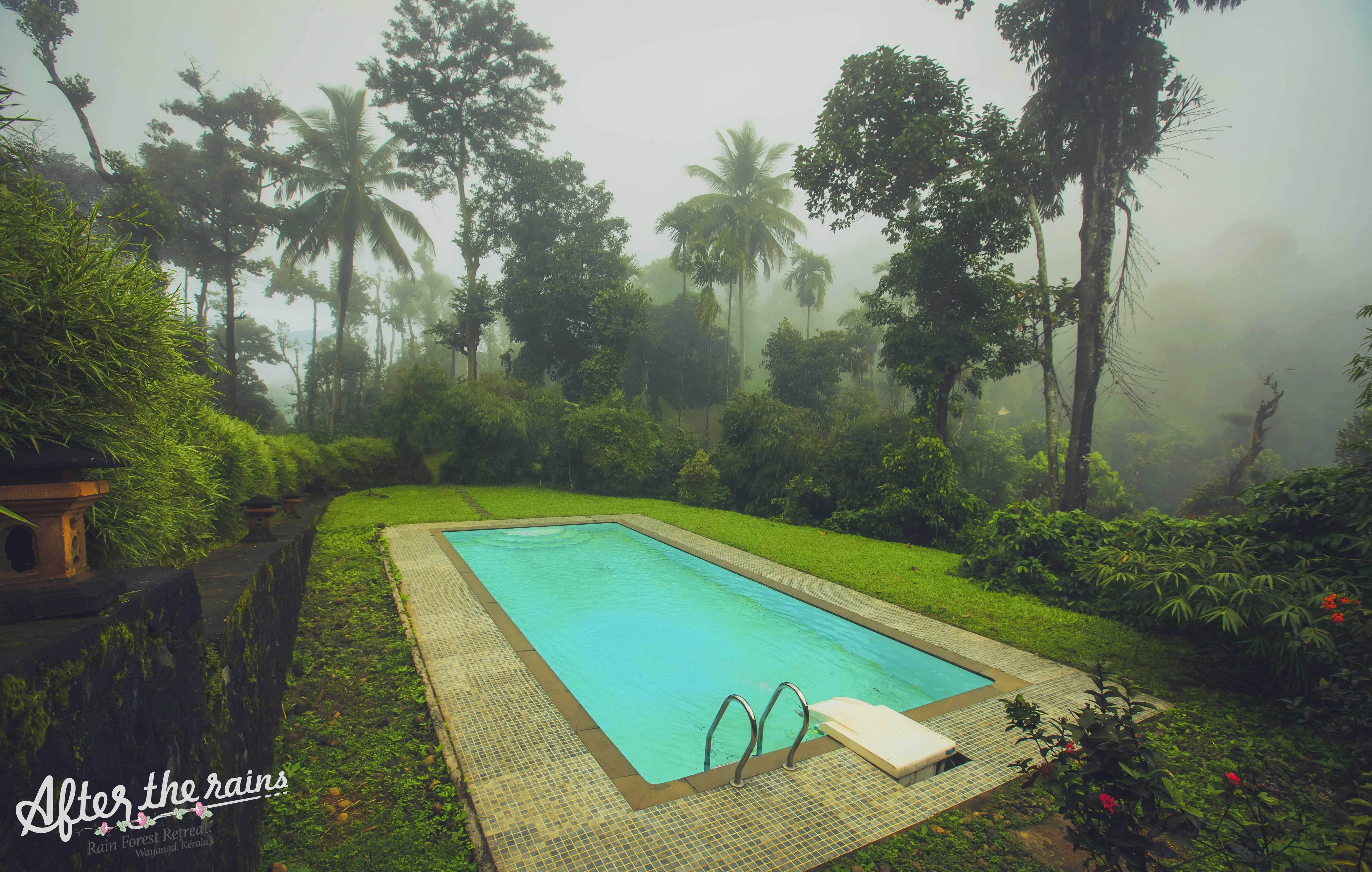 """"""" The extreme experience with nature """" to Wayanad"""