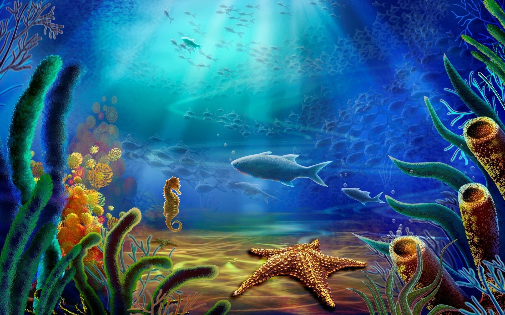 Undersea Life Artistic, wallpaper, life, marine