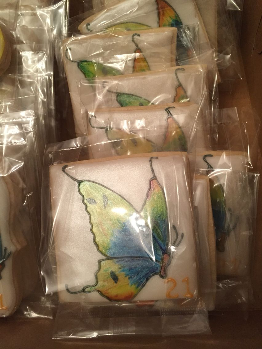 Hand painted butterfly cookies
