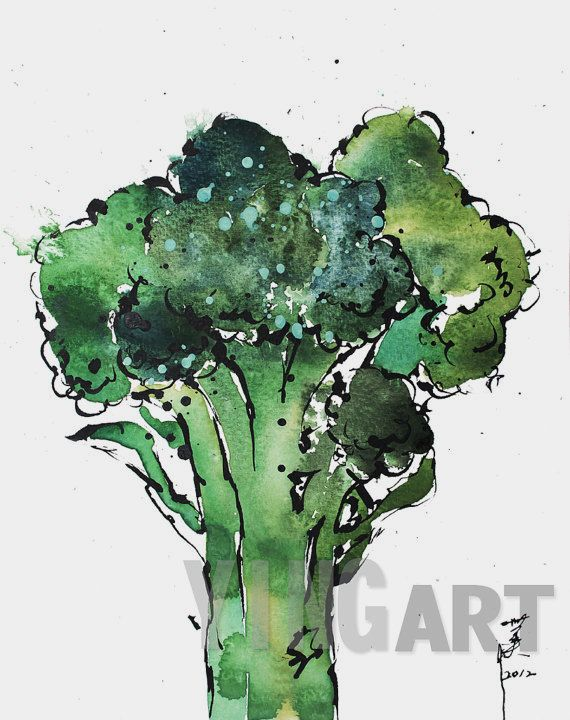 WATERCOLOR PRINT BROCCOLI by Ying Guo by YingArt on Etsy, $18.00