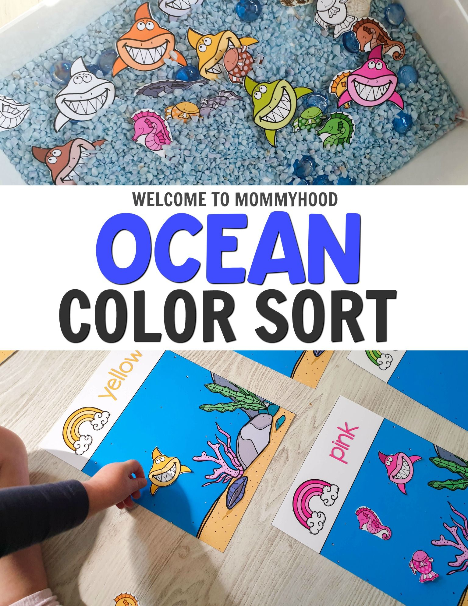 Ocean Animal Color Sorting Work For Ocean Theme Preschool