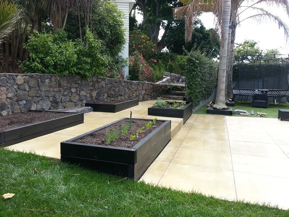 driveway landscaping ideas nz - Google Search   Garden ...