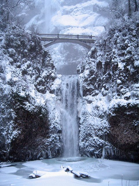 Multnomah Falls in the Columbia Gorge in Oregon - hubby & I have been here, it is a beautiful place!  Just sit and listen to nature with the fall's roar as background music, so peaceful and faith renewing.