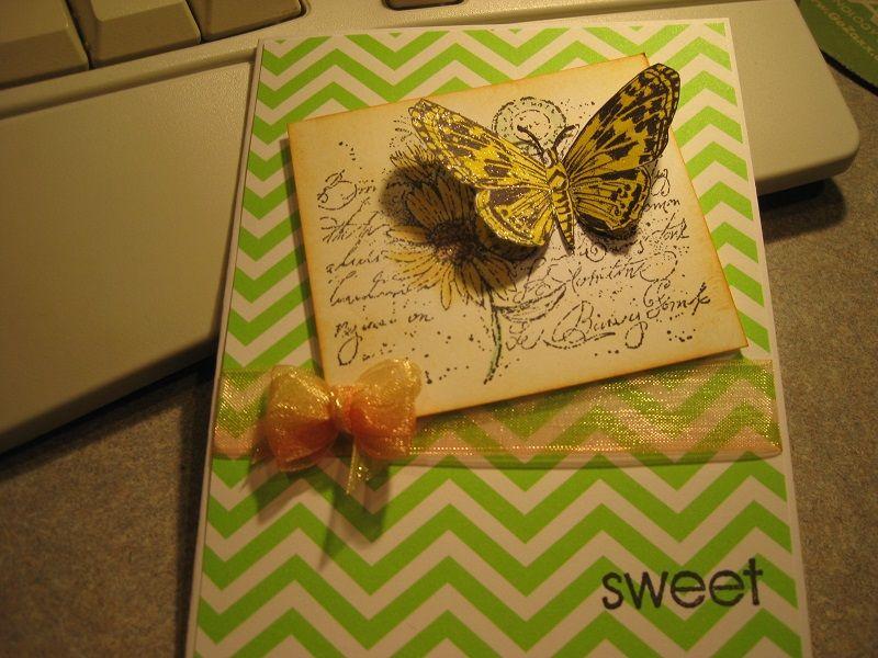 Sweet Butterfly